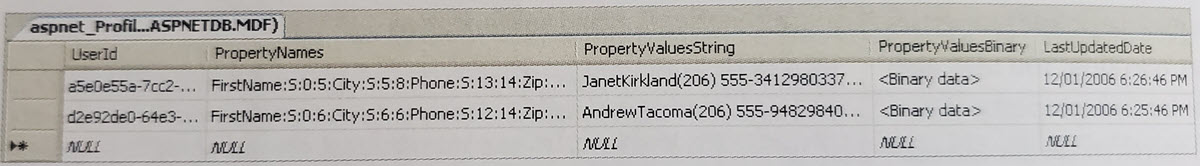Property Names and Values of ASP.NET Profile